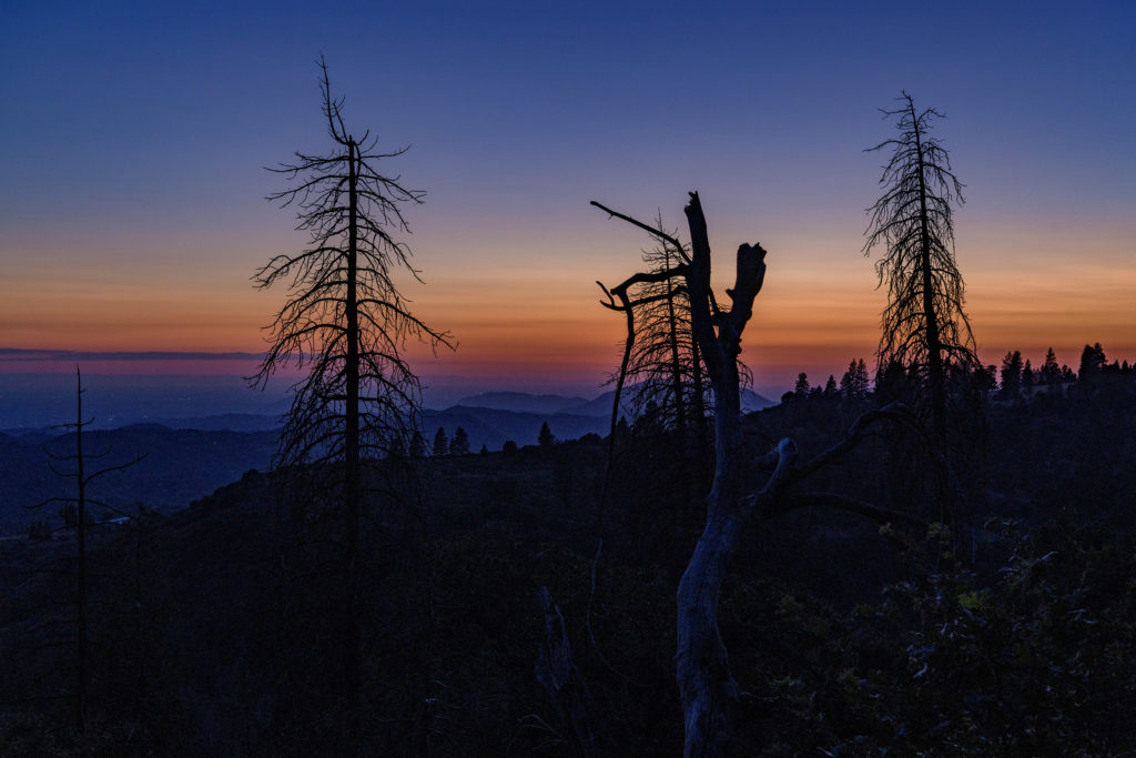 Blue hour and orange tones in the sky near Cedarbrook, California in Kings Canyon National Park.
